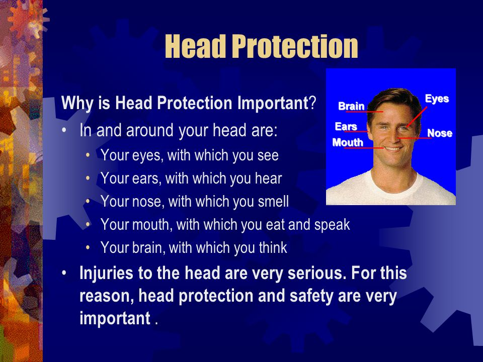 Head Protection Why is Head Protection Important