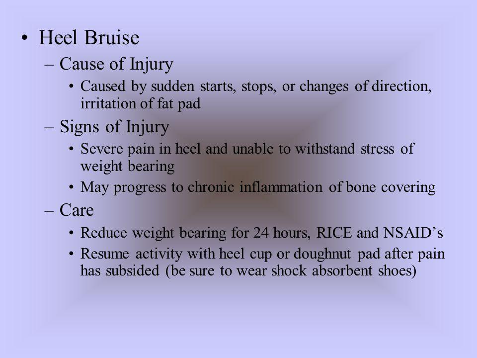 Heel Bruise Cause of Injury Signs of Injury Care