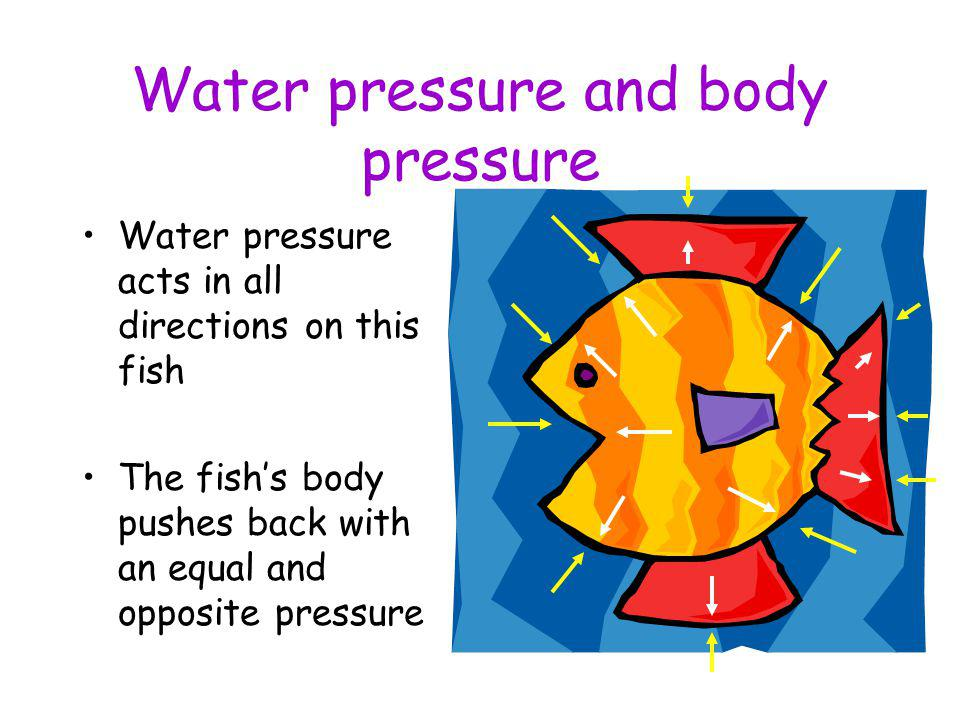Water pressure and body pressure