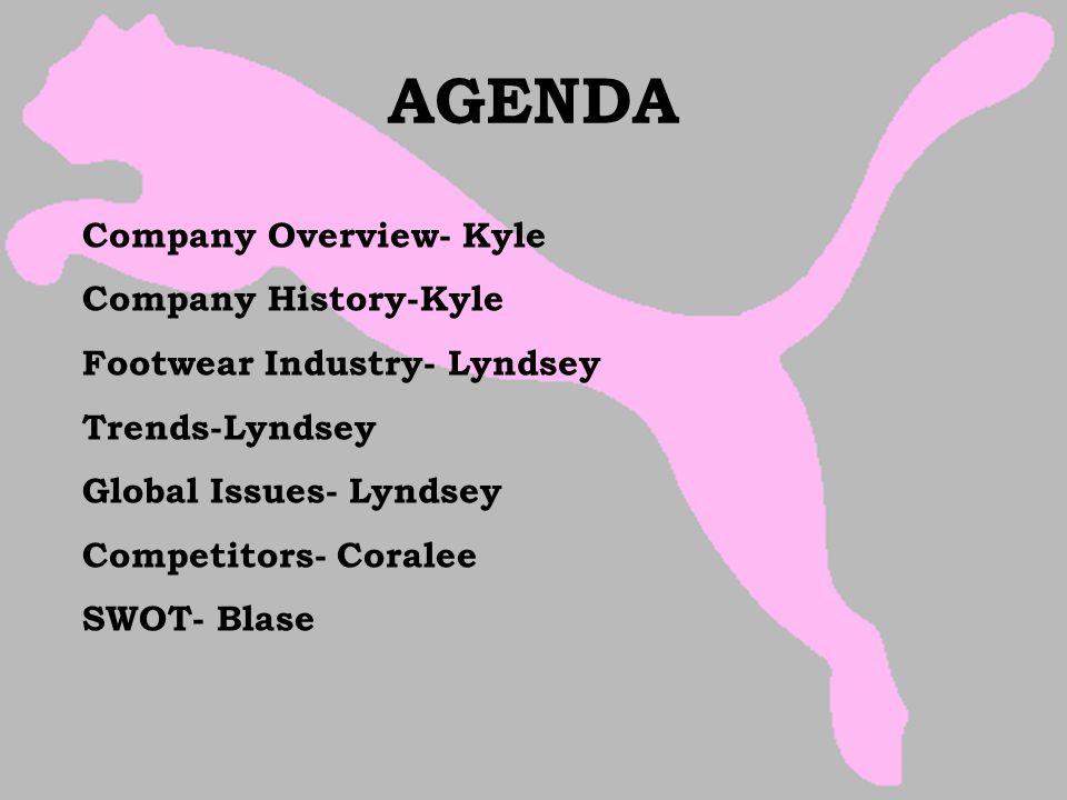 AGENDA Company Overview- Kyle Company History-Kyle