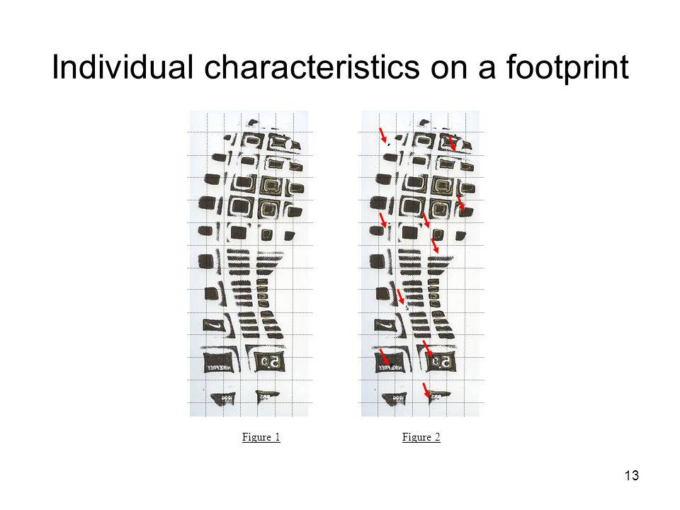 Individual characteristics on a footprint