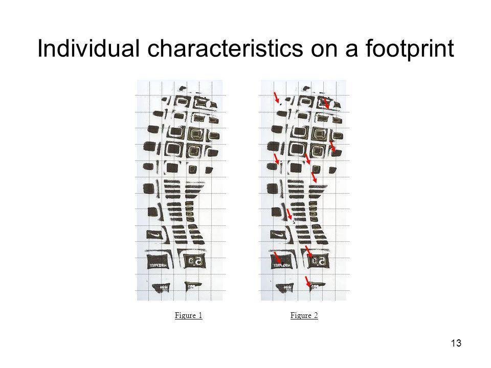 Individual characteristics on a footprint