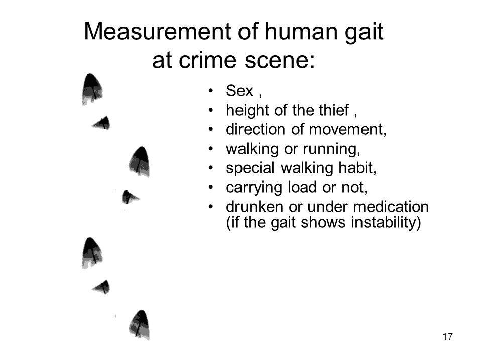 Measurement of human gait at crime scene: