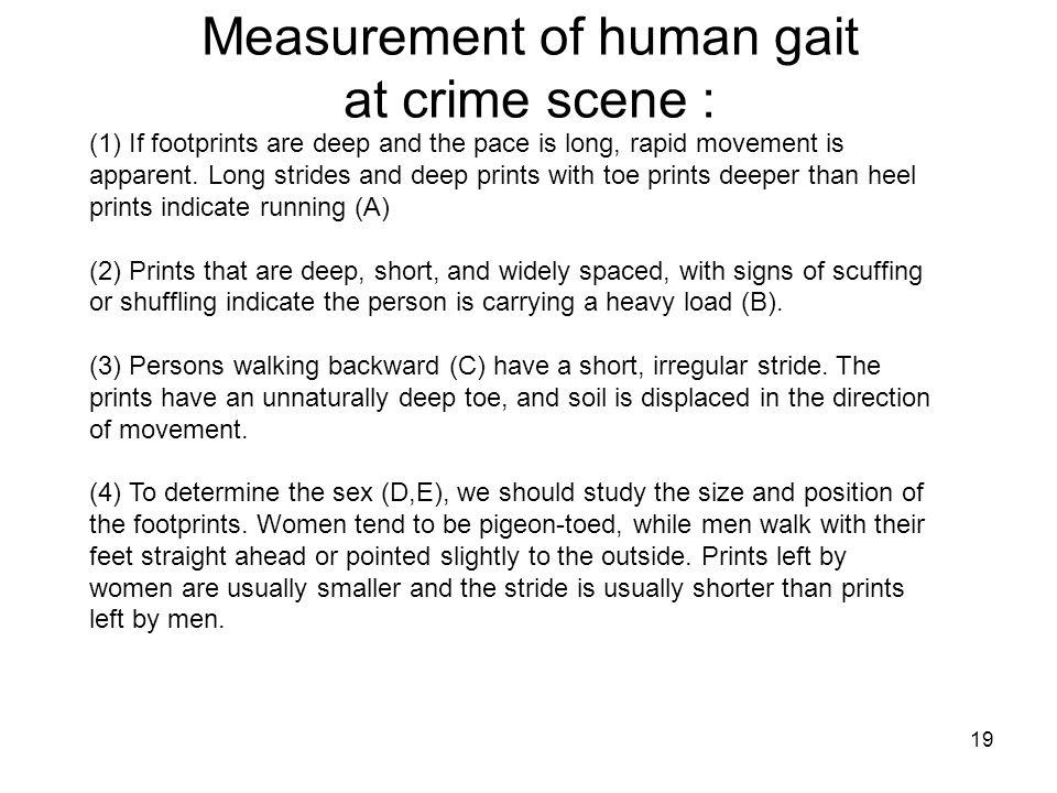 Measurement of human gait at crime scene :