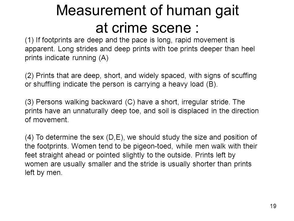 Measurement of human gait at crime scene :