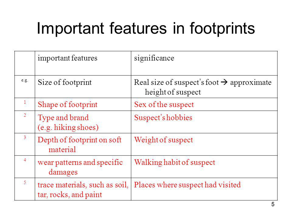 Important features in footprints