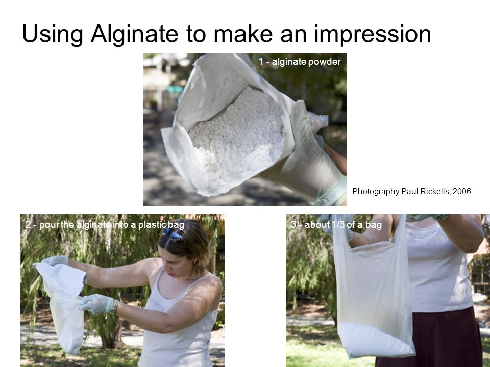 Using Alginate to make an impression