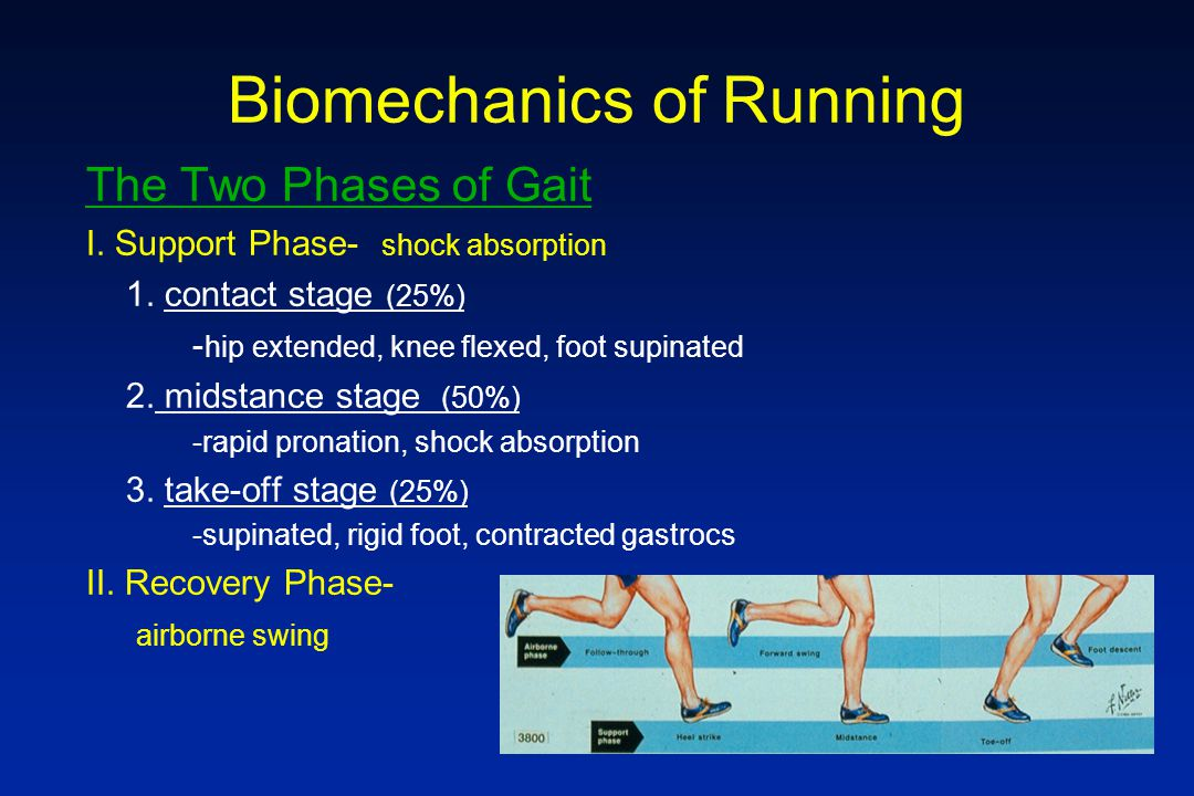 Biomechanics of Running