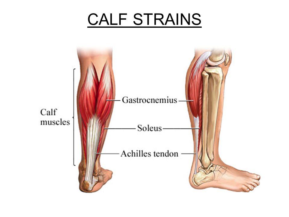 CALF STRAINS