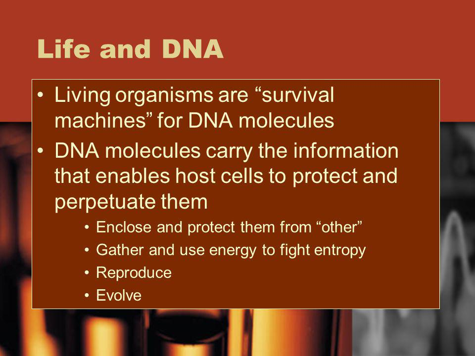 Life and DNA Living organisms are survival machines for DNA molecules.