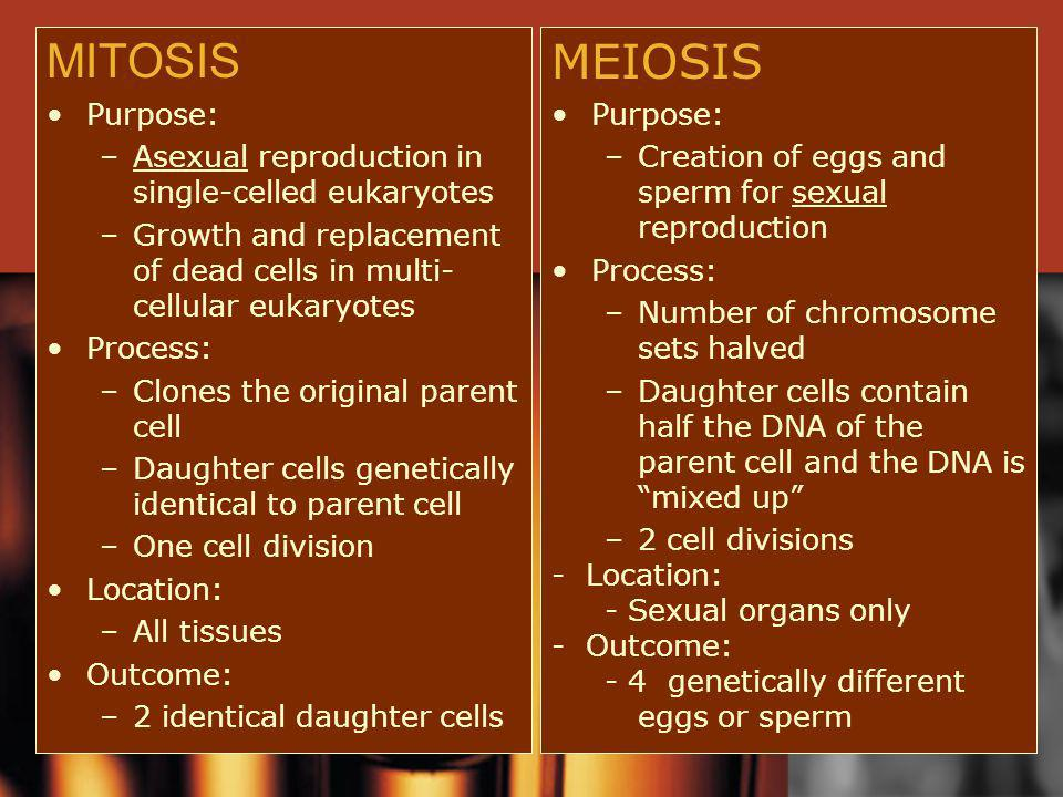 MITOSIS MEIOSIS Purpose: