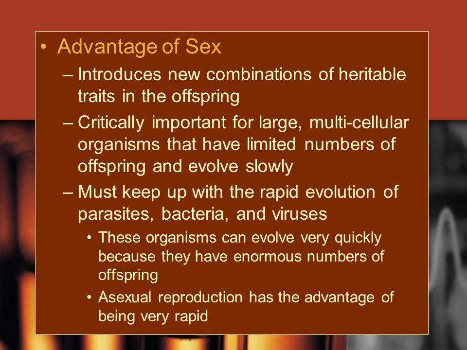 Advantage of Sex Introduces new combinations of heritable traits in the offspring.