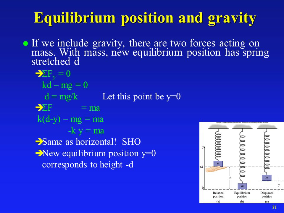 Equilibrium position and gravity
