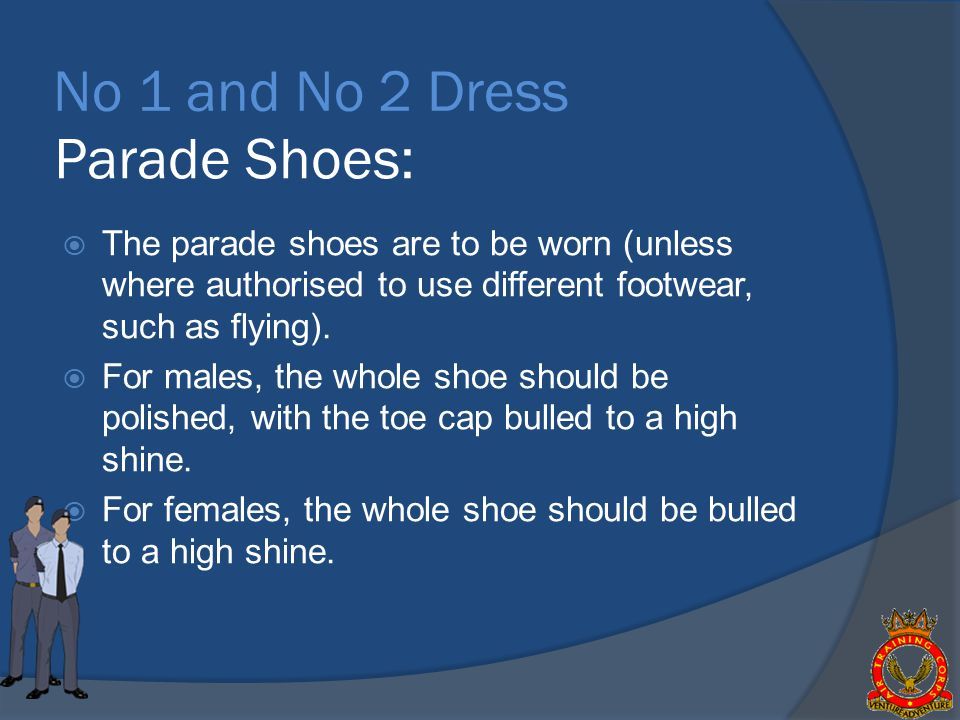 No 1 and No 2 Dress Parade Shoes: