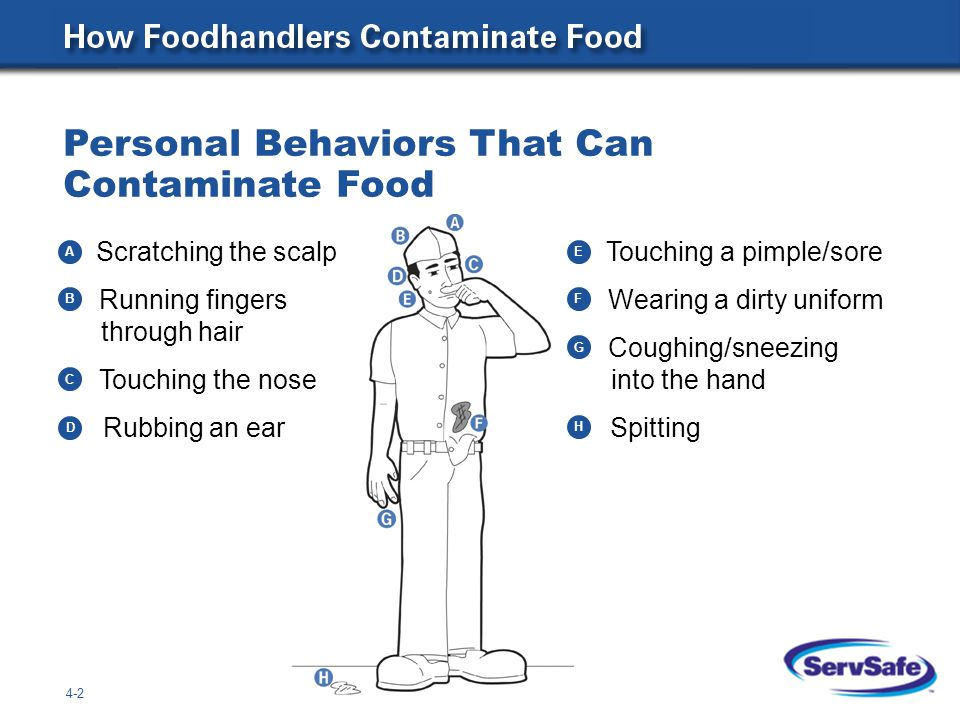 Personal Behaviors That Can Contaminate Food