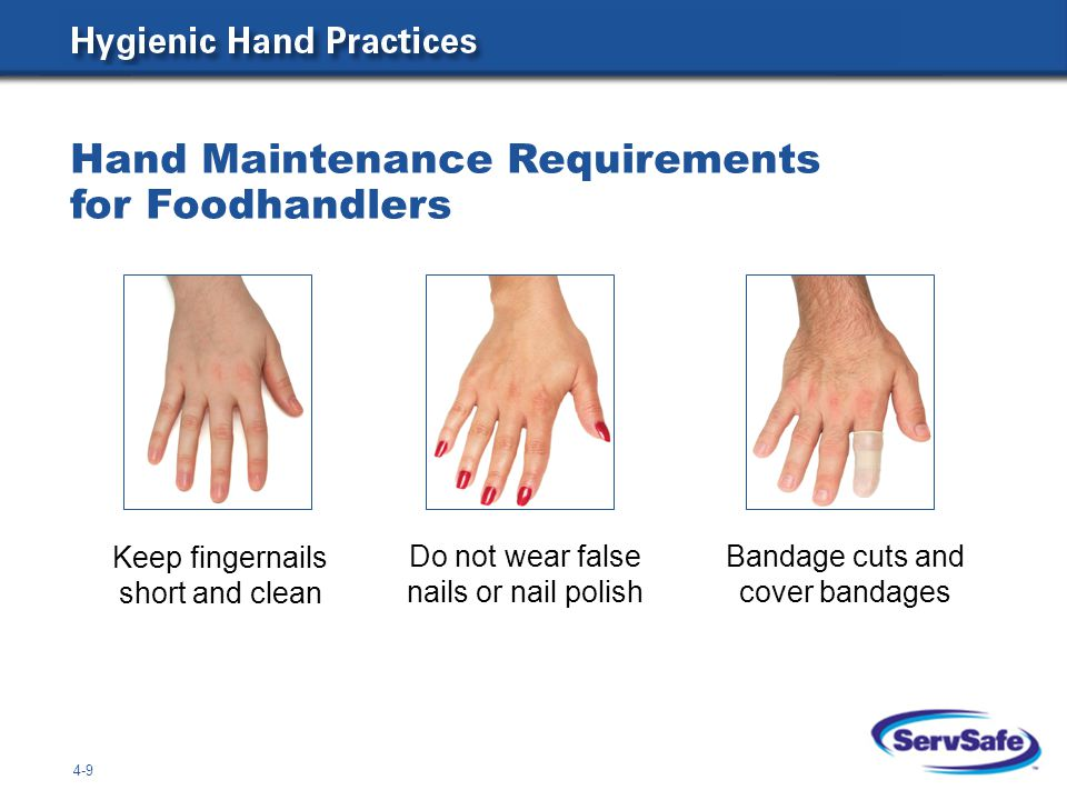 Hand Maintenance Requirements for Foodhandlers