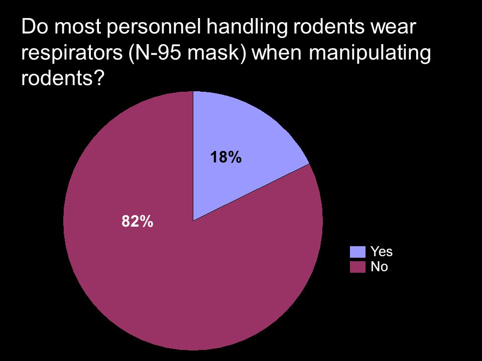 Do most personnel handling rodents wear respirators (N-95 mask) when manipulating rodents