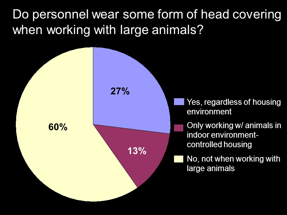 Do personnel wear some form of head covering when working with large animals