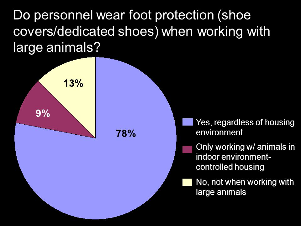 Do personnel wear foot protection (shoe covers/dedicated shoes) when working with large animals