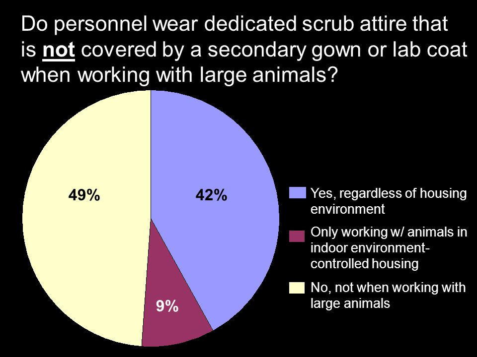 Do personnel wear dedicated scrub attire that is not covered by a secondary gown or lab coat when working with large animals