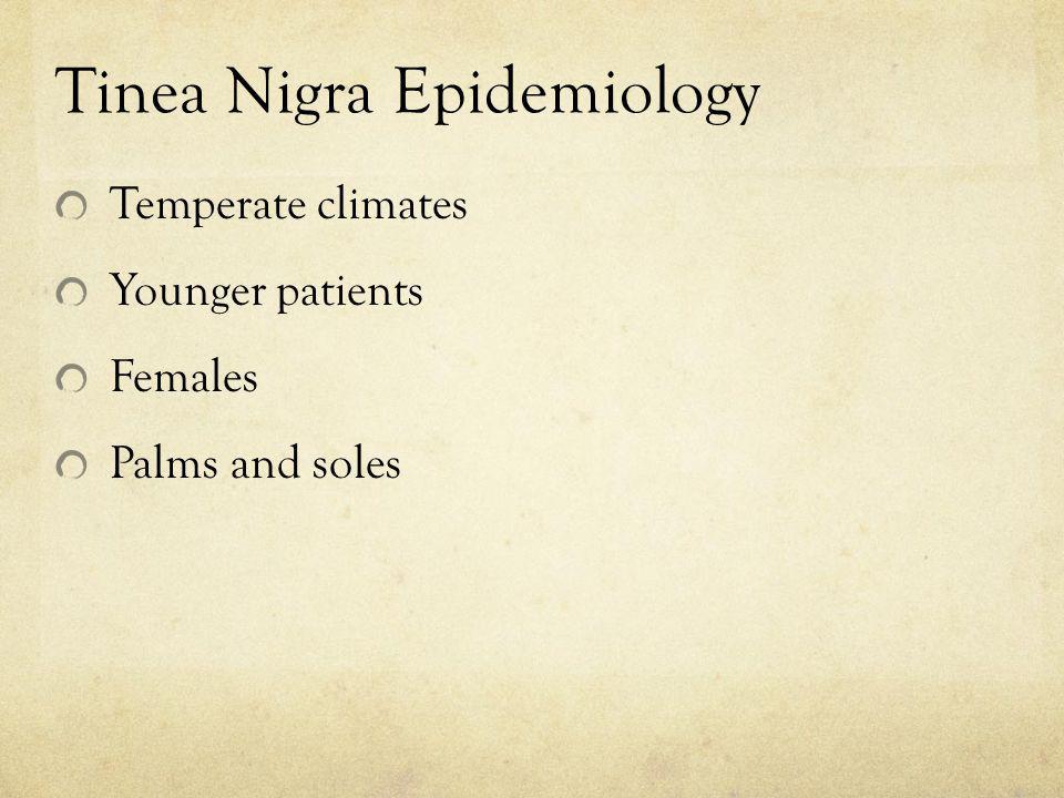 Tinea Nigra Epidemiology