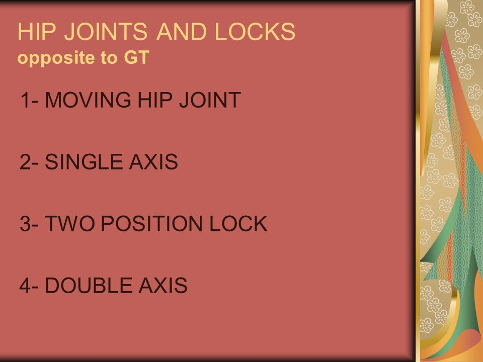 HIP JOINTS AND LOCKS opposite to GT