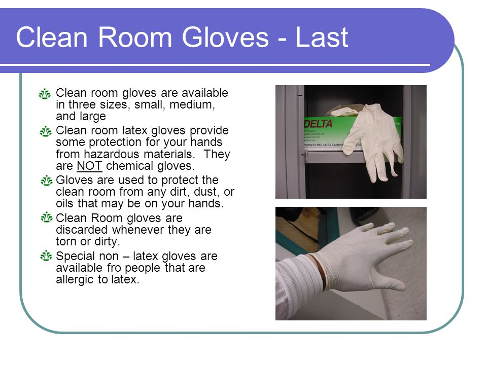 Clean Room Gloves - Last