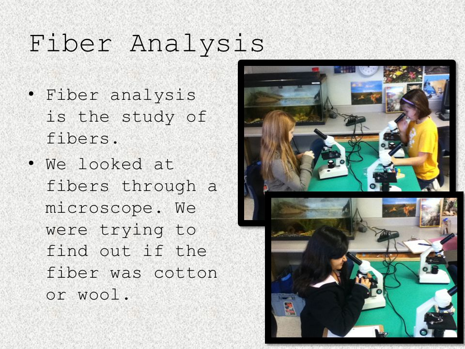 Fiber Analysis Fiber analysis is the study of fibers.