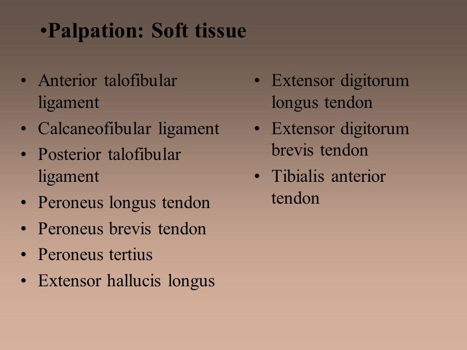 Palpation: Soft tissue