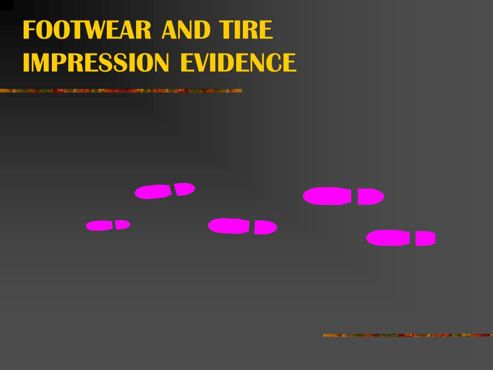 FOOTWEAR AND TIRE IMPRESSION EVIDENCE