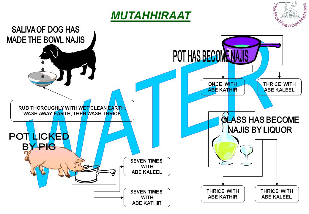 RUB THOROUGHLY WITH WET CLEAN EARTH, WASH AWAY EARTH, THEN WASH THRICE