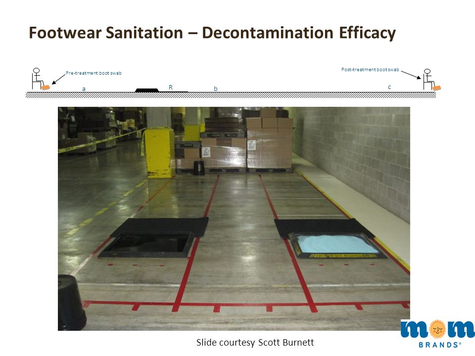 Footwear Sanitation – Decontamination Efficacy