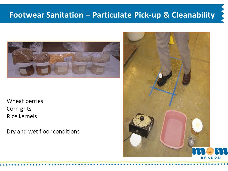 Footwear Sanitation – Particulate Pick-up & Cleanability