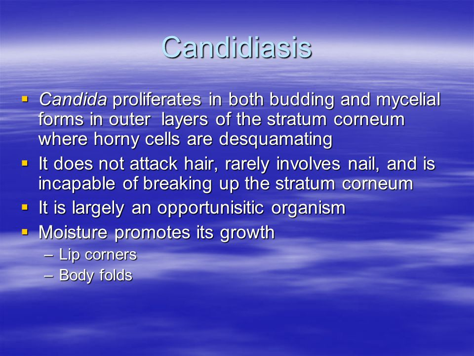 Candidiasis Candida proliferates in both budding and mycelial forms in outer layers of the stratum corneum where horny cells are desquamating.