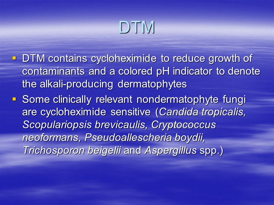 DTM DTM contains cycloheximide to reduce growth of contaminants and a colored pH indicator to denote the alkali-producing dermatophytes.