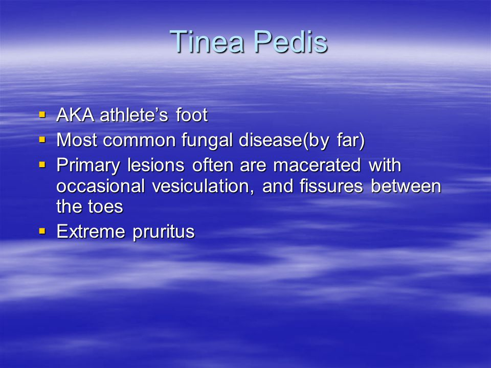 Tinea Pedis AKA athlete's foot Most common fungal disease(by far)