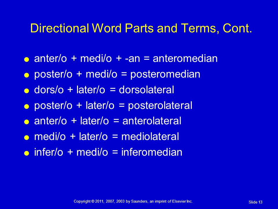 Directional Word Parts and Terms, Cont.