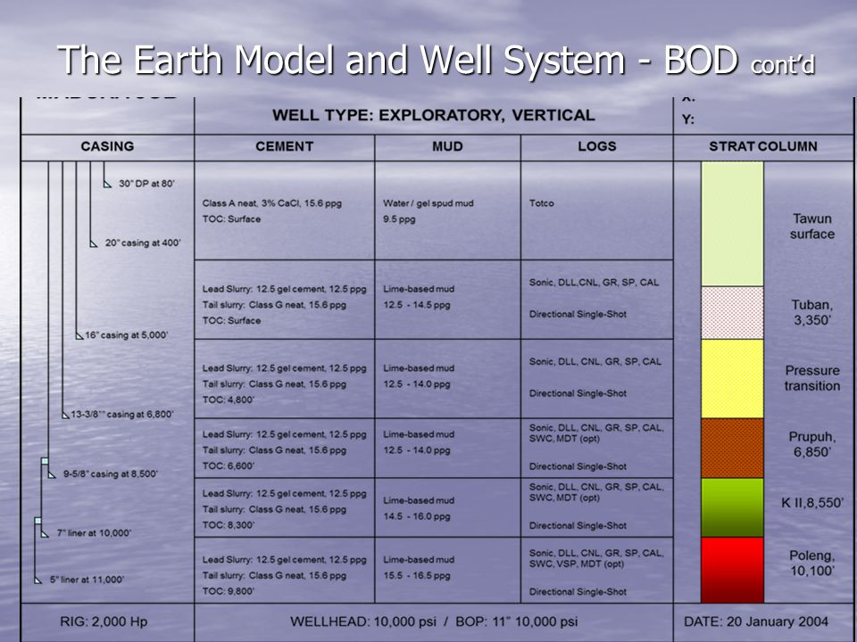 The Earth Model and Well System - BOD cont'd