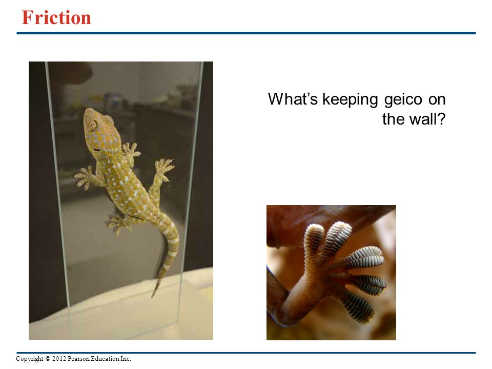 Friction What's keeping geico on the wall