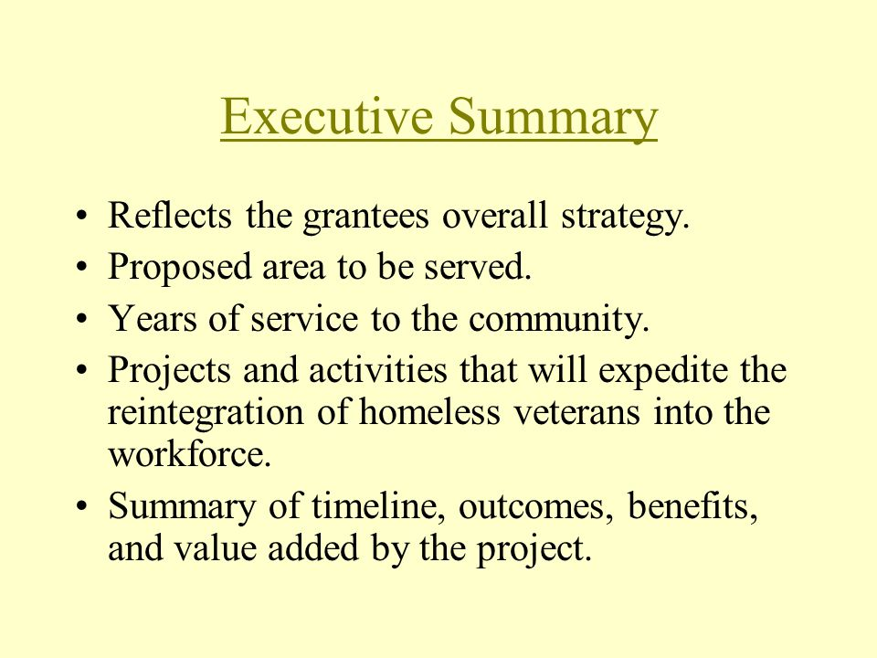 Executive Summary Reflects the grantees overall strategy.