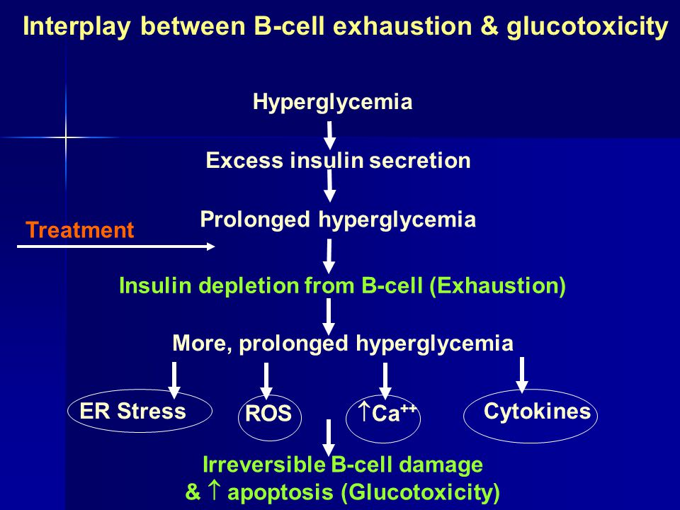 Interplay between B-cell exhaustion & glucotoxicity