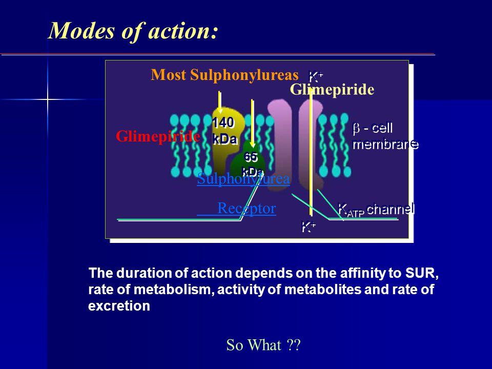 Modes of action: Glimepiride Most Sulphonylureas Glimepiride