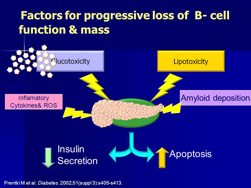 Factors for progressive loss of B- cell function & mass