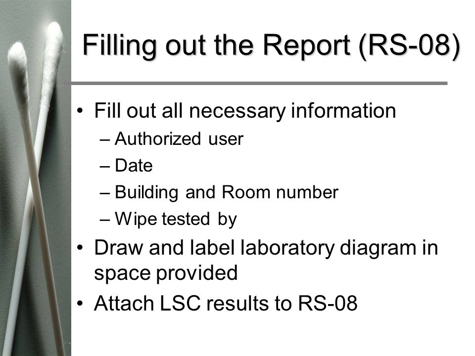 Filling out the Report (RS-08)