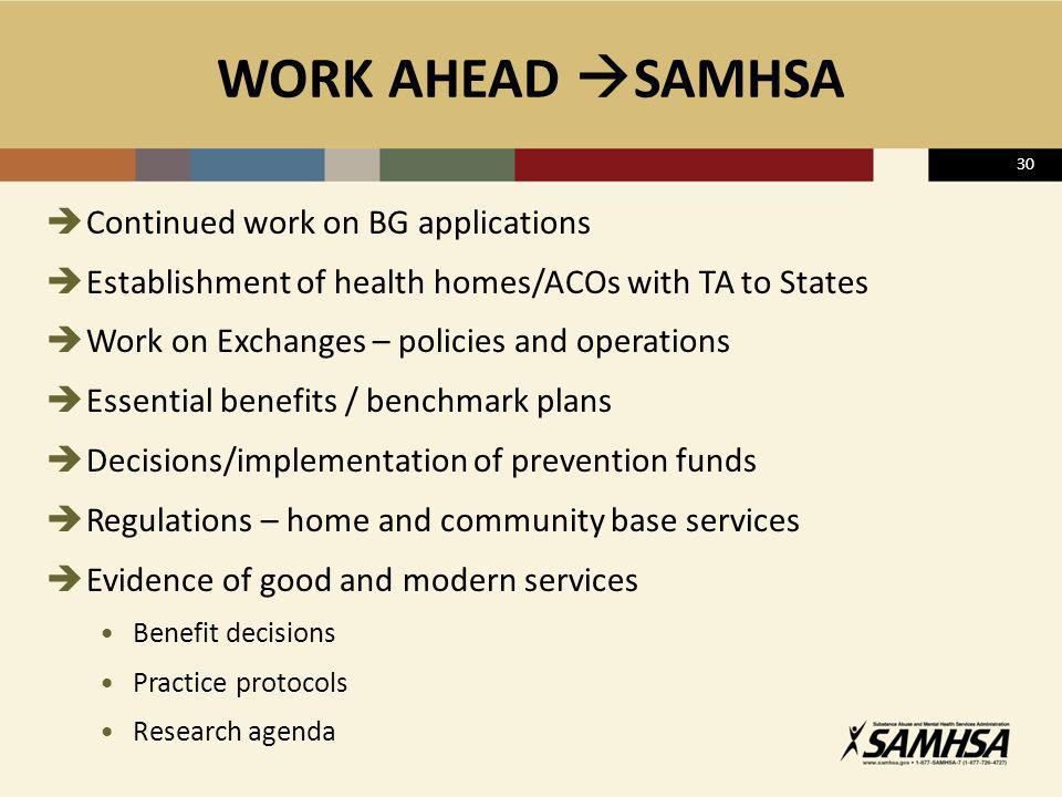 WORK AHEAD SAMHSA Continued work on BG applications