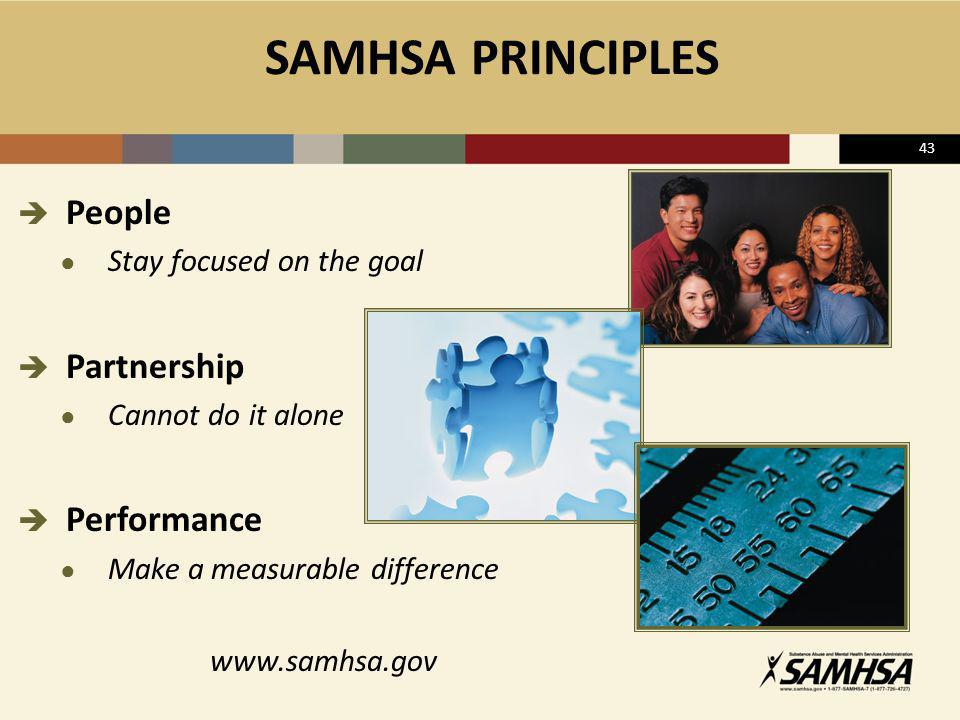 SAMHSA PRINCIPLES People Partnership Performance