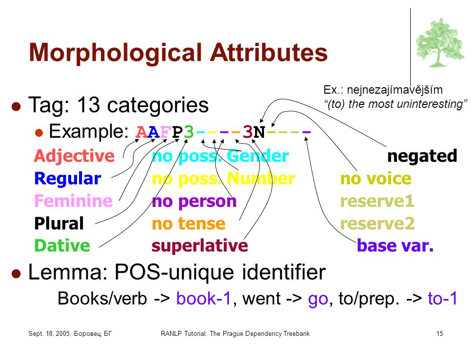 Morphological Attributes