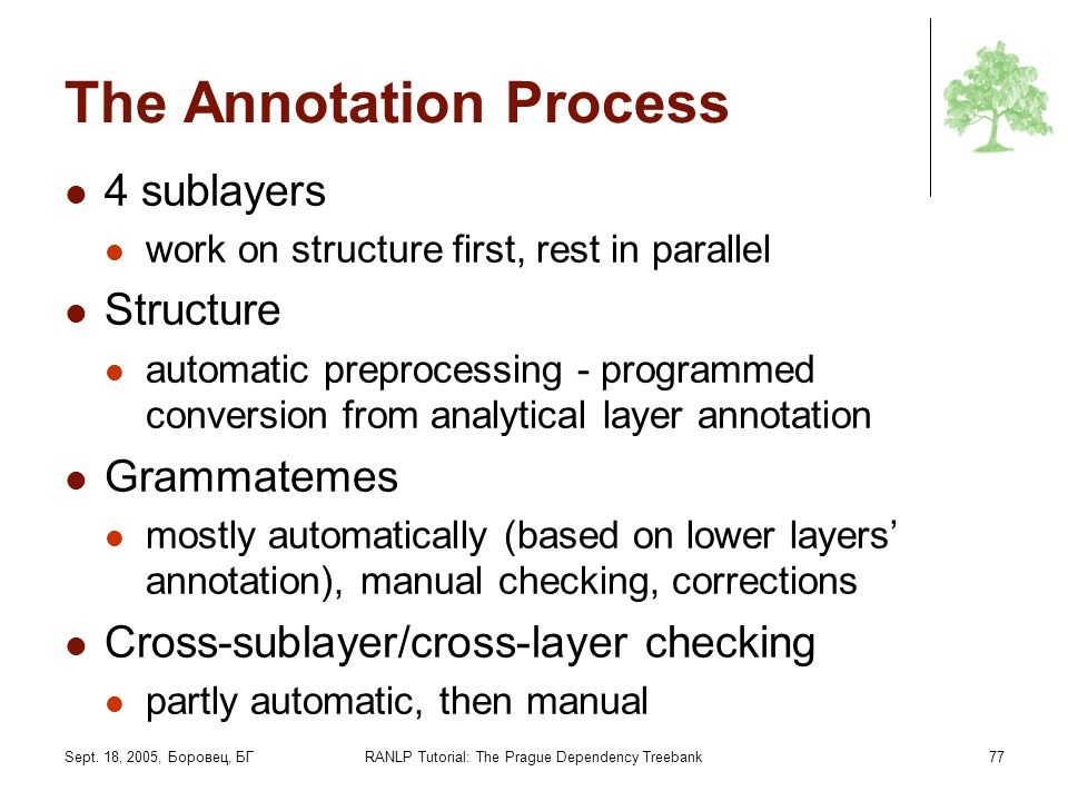 The Annotation Process