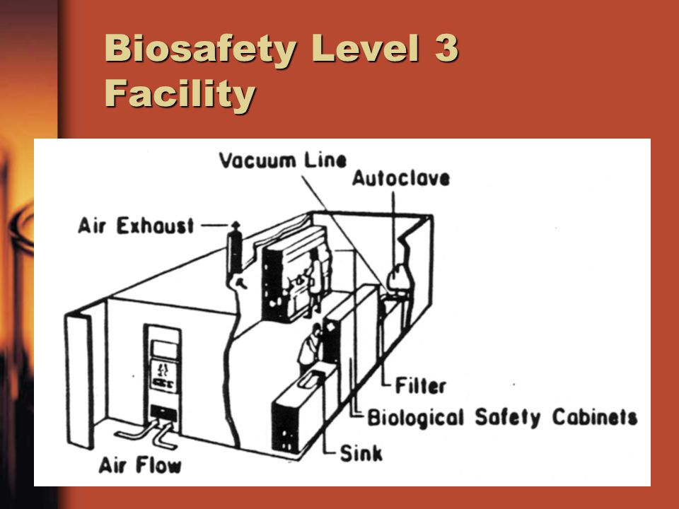 Biosafety Level 3 Facility