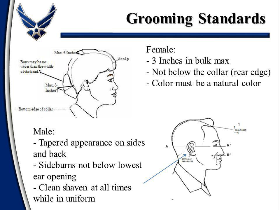 Grooming Standards Female: 3 Inches in bulk max